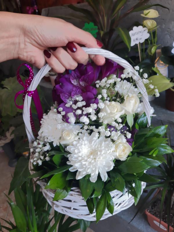 Ljubičasto i belo cveće